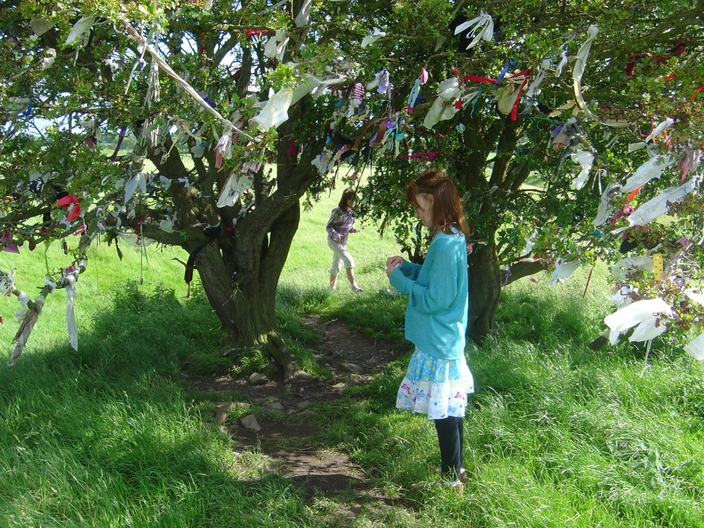 The Wishing Tree at the Hill of Tara